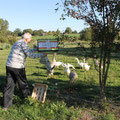 Heureusement que Jean-Paul pense à les nourrir et leur apporter des nouvelles fraiches !! (CLR)