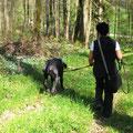 Mantrailing im Wald