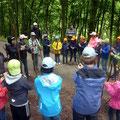 Ein Förster erklärt den Wald