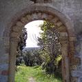 Torbogen zu einem Olivengarten bei Fenouillet