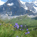 80mins walk from Kleine Schiedegg to Manniclen with views of Eiger, Switzerland