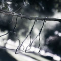 """Wire Hanger"" by HAY black or white   5er-Set  22,- €"