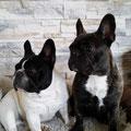 Lola und Betty