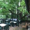 leider konnten wir nicht wegen Regen im schönen Garten sitzen