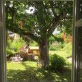 Blick aus der Wohnküche in den Garten