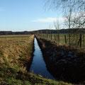 Entwässerungsgraben mit Neuanpflanzung