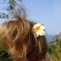 Pic à cheveux double en bois et fleur de frangipanier