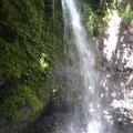 Und vielen Wasserfällen, Bwd Net Falls