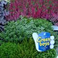 Hebe Green Boys