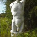 Männlicher Torso, Marmor