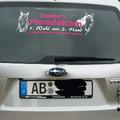 Mein Auto mit Werbung fürs Lädchen und den Pummelponys ;-)