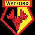 39_FC Watford II (GB)