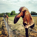 Boot Fence