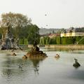 Veitshoechheim - Großer See im Schlossgarten