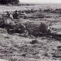 Panzergrenadiere im abgesessenen Einsatz - hier: aus Stellungen.