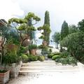 Création d'une entrée de jardin à Coudoux © Rc-Paysage