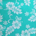 Hawaiiblumen Mint