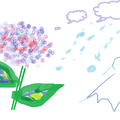 あじさい 藤田さんの作品 6/19 ペイント初日