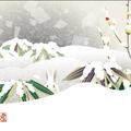和UESAKA/上坂友禅・雪に笹