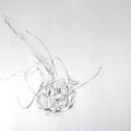 Knoblauchknolle, Bleistiftzeichnung