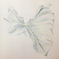 Botanisches Zeichnen: Callablatt, Kolorierung mit Buntstiften I