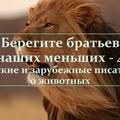 """""""Берегите братьев наших меньших-4"""", мероприятие к тематической неделе, 2015."""
