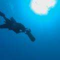 Foto , Dennis, Monkey Diving, UW-Scooter, Ducks