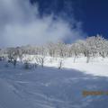 東谷深雪滑降コース。