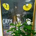 RAKUYA名駅・サインポスター・ハワイアングリーン・名古屋