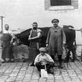 Les ouvriers à l'abattoire