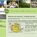 """Website für Wohnprojekt """"Lebenstraum 2"""""""