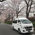 介護タクシーで桜 さくら