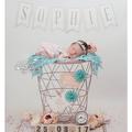 Geburtsanzeige,Birthannouncement,geburtskarte,neugeborenenfoto,babyfoto,babykarte,baby,sachsen,willkommen,lichtbildkünstlerei,hebamme,
