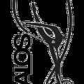 Kalos Centre Gimnastica