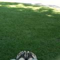 今日は歩きすぎました〜〜〜。。。21世紀美術館のお庭で一休み。 木陰の芝生って、やさしいね。 疲れが癒されました。