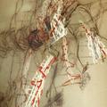 Körpergewebe (Detail)/2000/ 22 x 30 x 12 cm/ Holz; Bindfaden; Nadeln; Zeichnung; Plexiglas