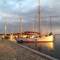Haikutterregatta Nysted (DK) 2012