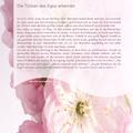 Artikel: Spirituelle Perfektion in Demut lösen