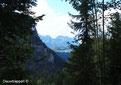 Velden bij het Hürtgenwald