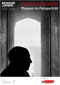 Ichundichundich. Portraits of Picasso 2011/2012