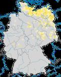 Karte zum Brutvorkommen des Rothalstauchers (Podiceps grisege) in Deutschland.