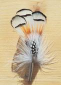 Feder mit Hülse, 13 cm