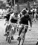 Profi-Rennen in Belgien
