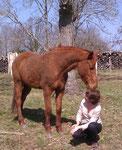le cheval qui murmurait à l'oreille...