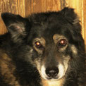 Hilda lebt ihre letzten Jahre im Zuhause :-))