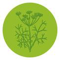 Genuss; Set; Gewürze; Gewürzmischungen; Kräuter; Cafè de Paris; Cafe de Paris; Herbes de Provence; Kräuter der Provence; Salatkräuter