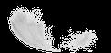 Federleicht • Hypnose • Mentaltraining • Raucherentwöhnung • Sporthypnose in Heidelberg • Weinheim • Mannheim • Saarlouis • Rauchentwöhnung • Nichtraucher werden mit Hypnose