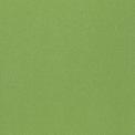 9512 Зелёный