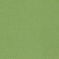 9513 Салатовый