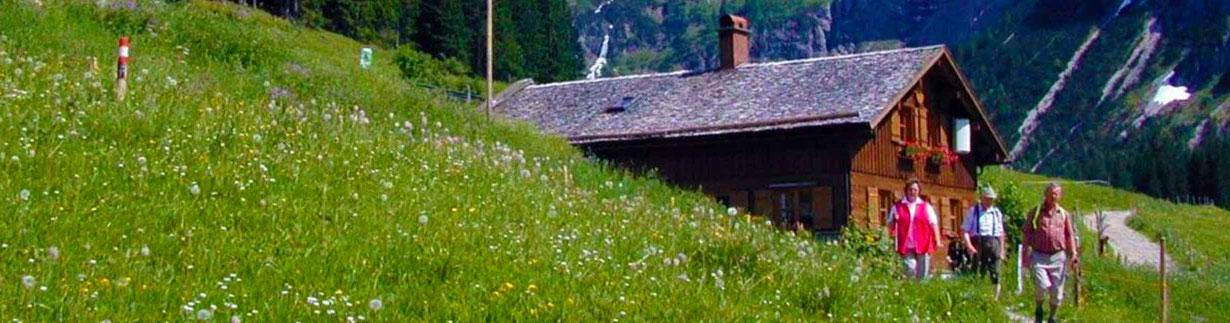 Innere Wiesalpe im Kleinwalsertal, Bergkäse, Wurst, Alpkäse, Butter, Schinken, Speck Brotzeiten und zum Kauf, Ausflugsziel, Alpe im Wildental, 1.300 m, Online-Shop